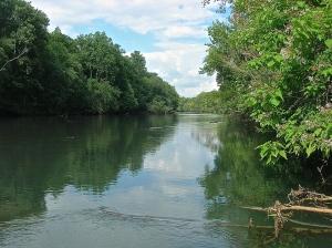 Upriver Chattahoochee
